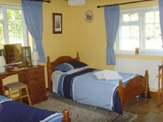Brookleys Bed & Breakfast: und floor twin bedroom with private bathroom.