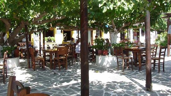 Kandouni: Outdoor Terrace