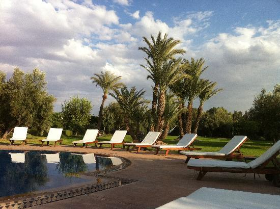 La Villa des Golfs: Le jardin ...