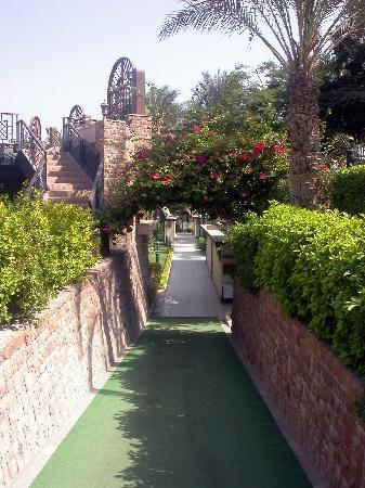 โรงแรม โอเอซิส: Walkways to the rooms