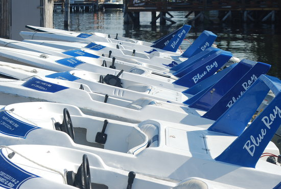 BlueRay : Our boats ready for action!
