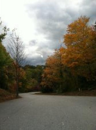 Asheville West KOA: The entrance to campground behind Kabin K2
