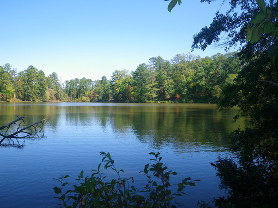 Lake Rutledge Picture Of Hard Labor Creek State Park