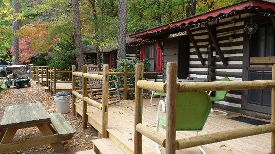 Lazy susan picture of log cabin motor court asheville for Tripadvisor asheville nc cabins