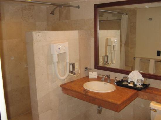 Sandos Caracol Eco Resort: Baño hab. standard