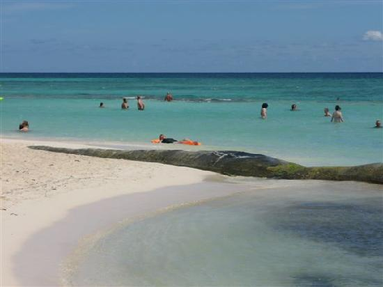 Playa Sandos Caracol Picture Of Sandos Caracol Eco Resort Playa Del Carmen Tripadvisor