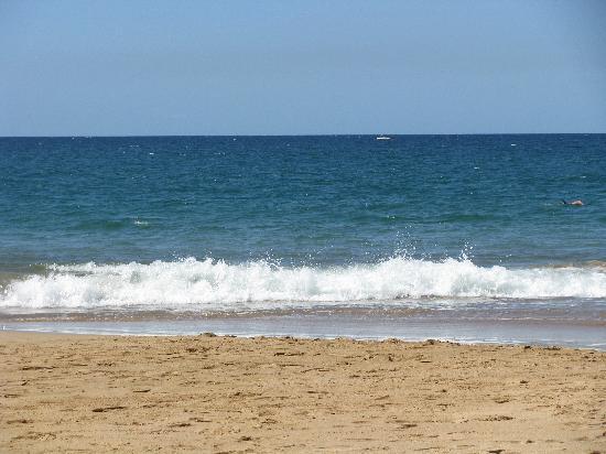 Dolphins Point Maui: Kama'ole Beach I