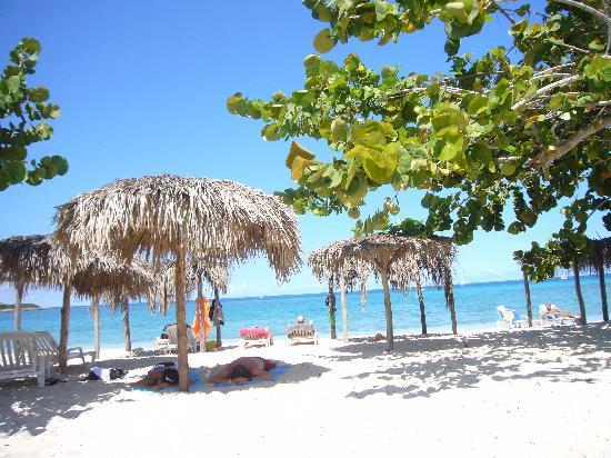 Clair Comme De L Eau Roche Picture Of Hotel Playa