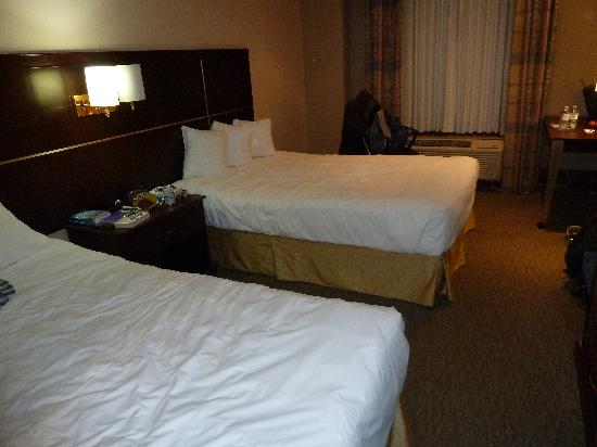 Woodbine Hotel & Suites : 2 Queen beds-Zimmer Park Inn Toronto