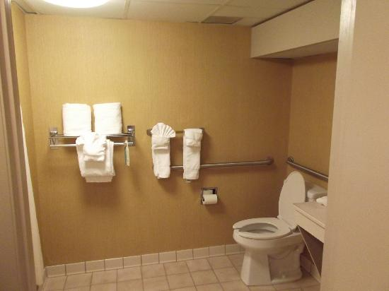 BEST WESTERN PLUS Greensboro Airport Hotel: Bathroom