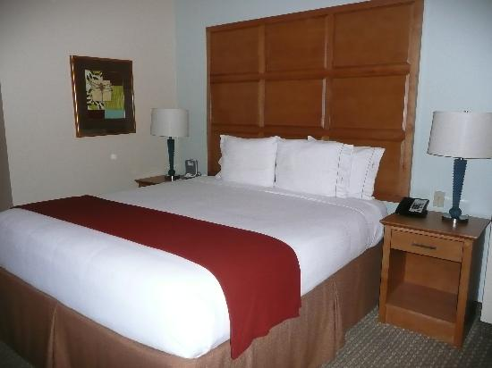 Holiday Inn Express Hotel & Suites: king bed