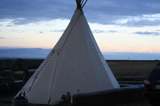 Cherry Wood Bed Breakfast and Barn: Teepee