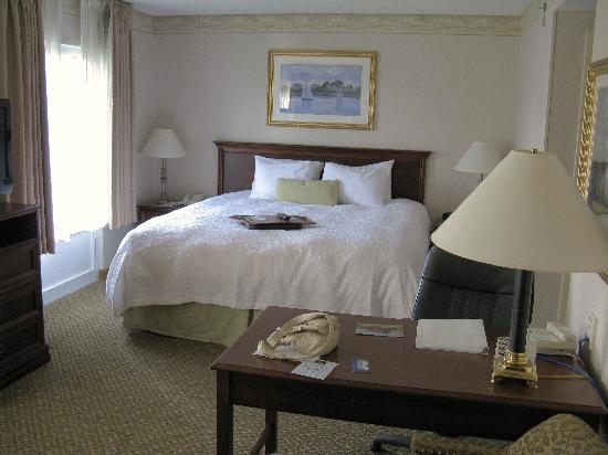 Hampton Inn & Suites Newport/Middletown: King suite