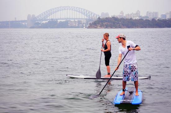 Sydney Scenic SUP: taking it all in!