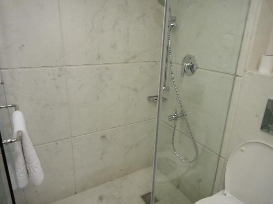 Sage Hotel : Large shower area