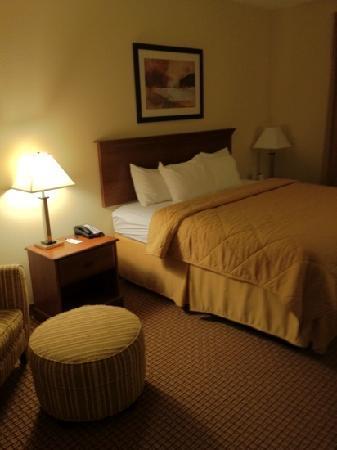 Comfort Inn & Suites: bed area