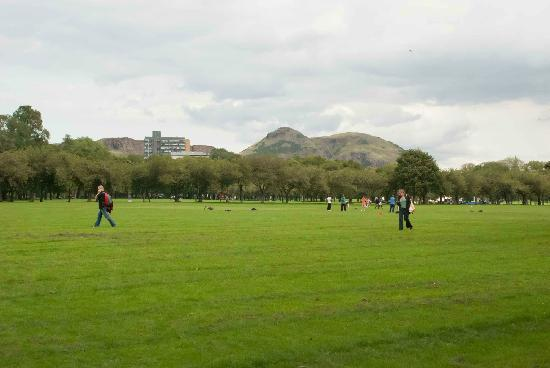 The Meadows: Meadow Park - a great place to have some fun