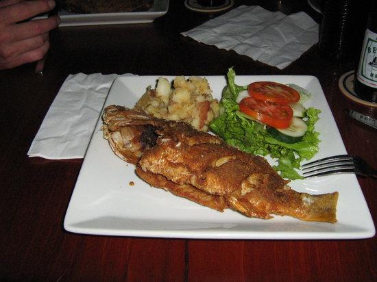 Yoli's Bar & Grill : Winstons catch ... yum