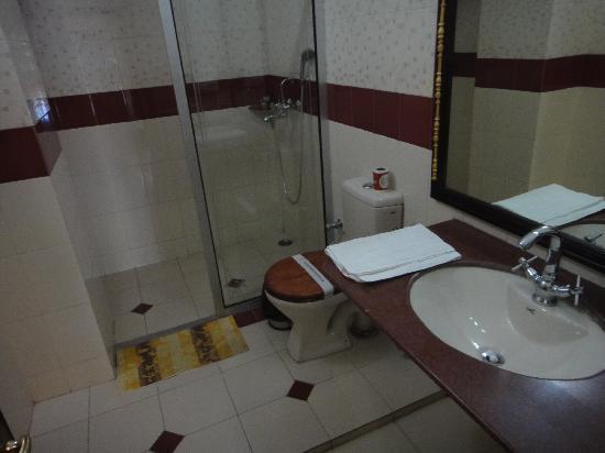 โฮเต็ล ไวมอล เฮอร์ริเทจ: toilet and shower
