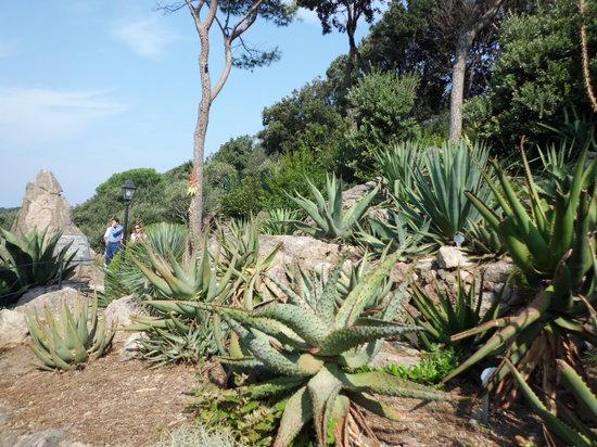 Giardini La Mortella : la mortella