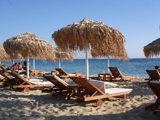 Hotel Katerina: Strand Agios
