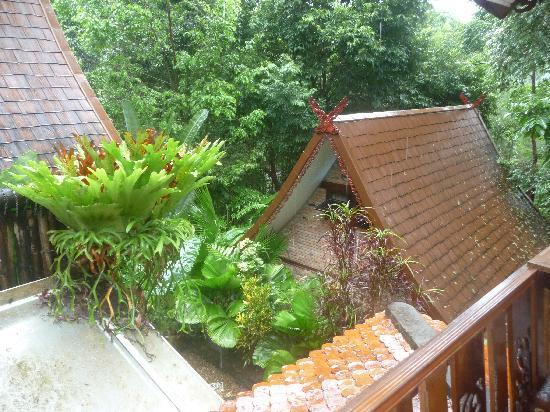 Khao Sok Las Orquideas Resort: Blick vom Balkon