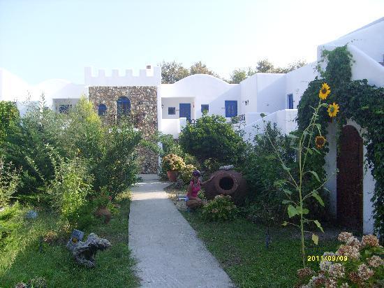 Archondissa Beach Hotel : Archodissa garden