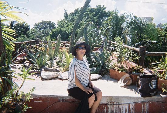 Roof garden at Maison Tulum