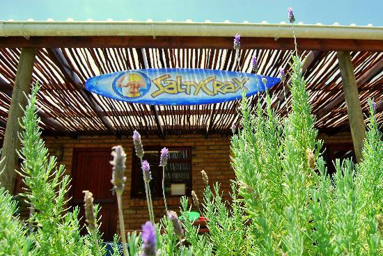 SaltyCrax Backpackers / Surflodge: Saltycrax garden