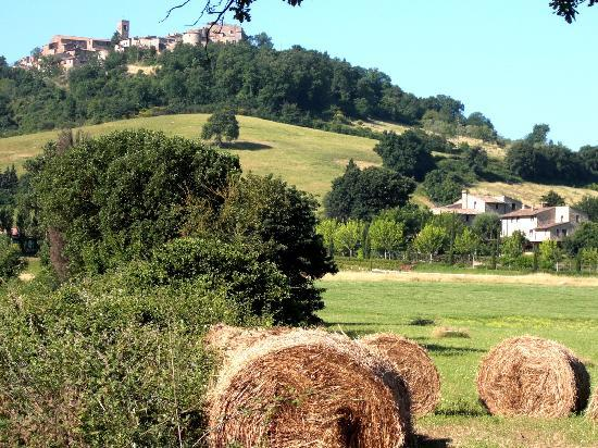 Borgo Al Cerro - countryside around us