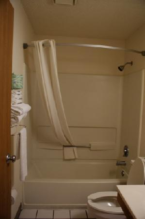 Super 8 Sterling Heights/Detroit Area : bathroom