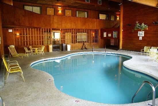 Cedar Motor Inn: pool and spa area