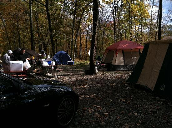 Cranberry Run Campground: Campsite