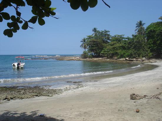 Cabinas Kire: beach