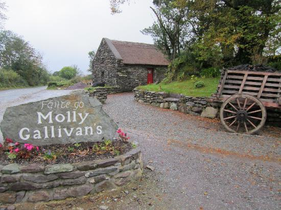 Molly Gallivan's Cottage & Traditional Farm : Welcome to Molly Gallivan's