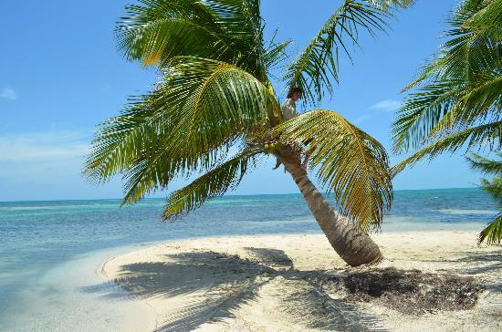 Isla Marisol Resort: Corner of the island