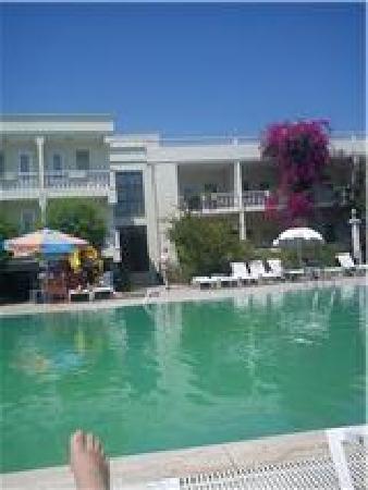 Club Aqua Ortakent: green pool