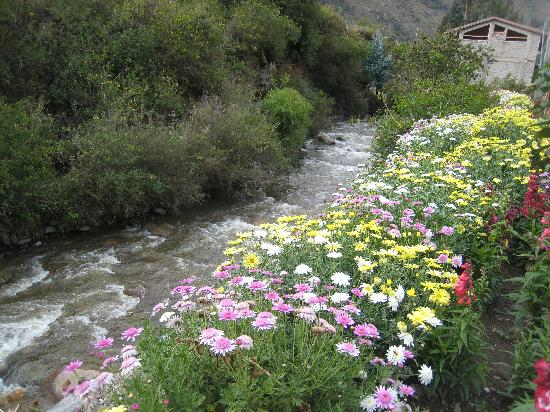 Hotel Las Orquideas: River lined with flowers across the street