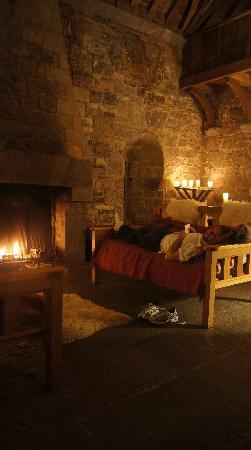 Ballyportry Castle: enjoying a turf fire in the great room our last night