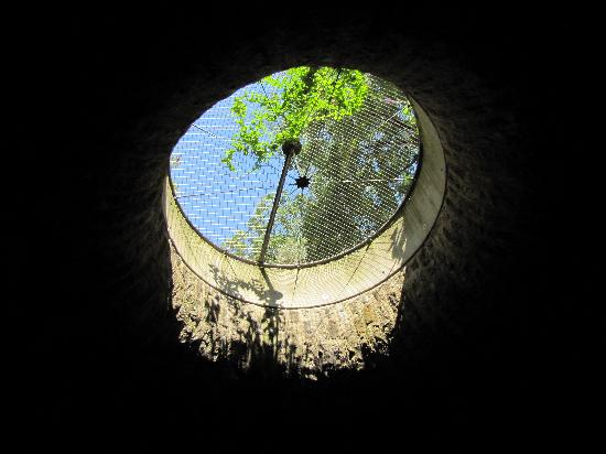 Canauxrama: looking up from the tunnel