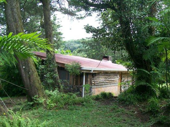 Cabanas Las Ardillas: Log cabin exterior