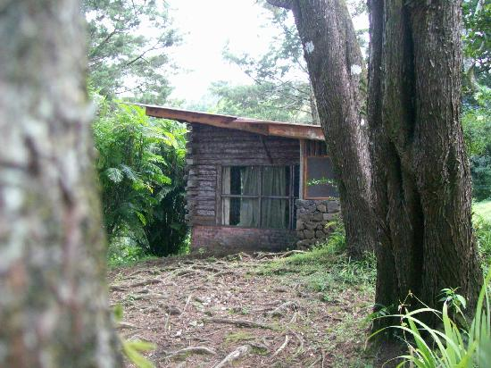 Barva, Costa Rica: log cabin exterior