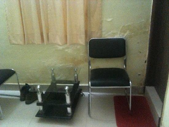 Hotel Anand Villa: damp wall