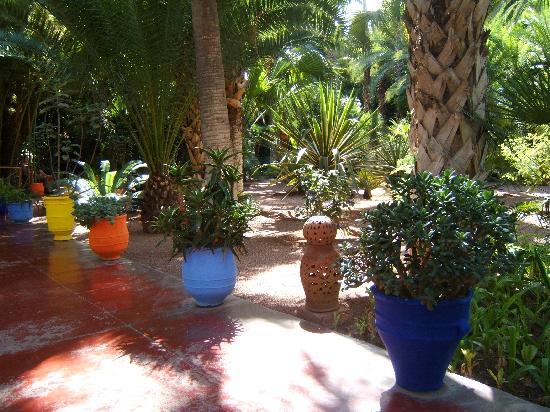 Riad Al Kadar: Majorelle gardens