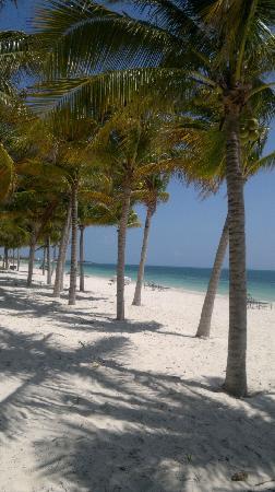 Zoetry Paraiso de La Bonita: Beautiful...