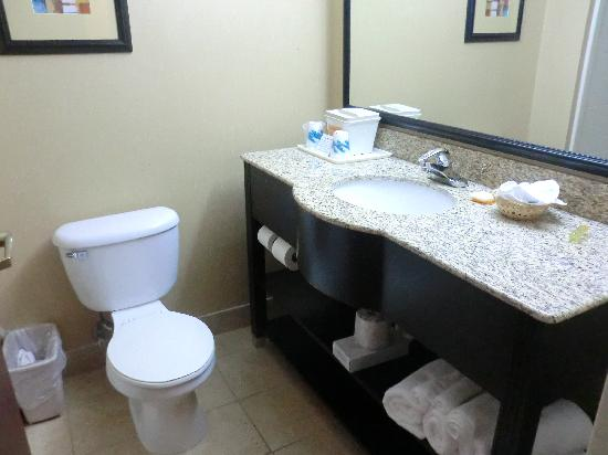 La Quinta Inn & Suites Dalton: Bathroom Toilet and Sink with enough towels handy