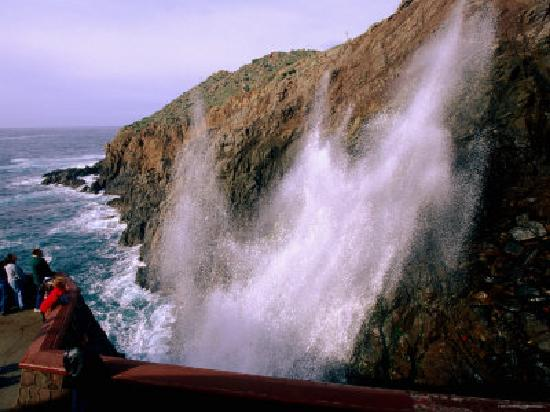 Ensenada Tours