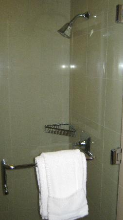 Ameristar Casino Hotel Vicksburg: Nice updated shower