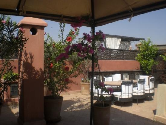 Riad Dar Selen : Roof top Terrace