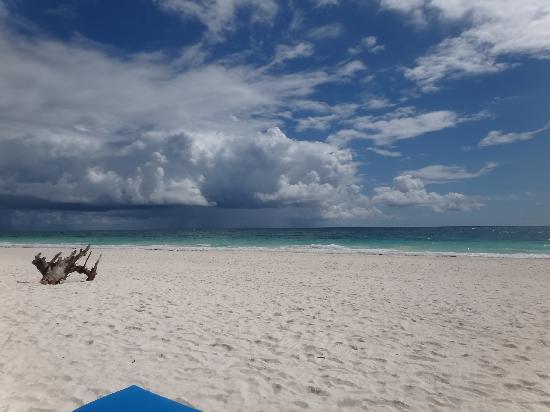 Morph Kiteboarding: Awesome beach
